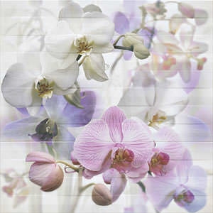 1_m_Decor-Orquidea-3-75x75-